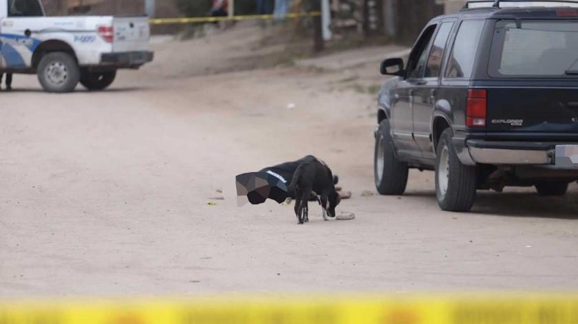 El ataque se registró a unos metros de la unidad deportiva Del Ejido.(Gustavo Suárez)