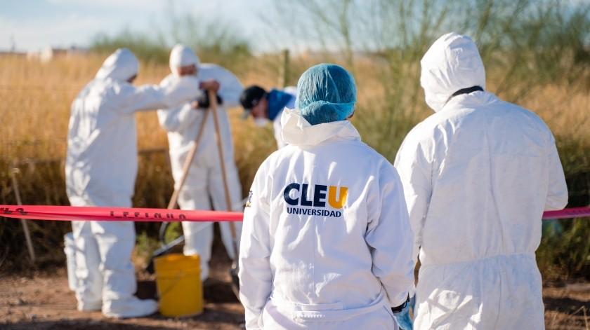Y por otro lado la criminalística se centra a la investigación en sí, aplica métodos y técnicas de investigación, recoge pruebas e indicios criminales, e identificar a los autores del delito.