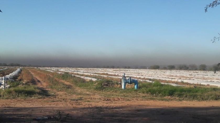 Acordaron hacer recorridos para notificar a los agricultores que quemaron neumáticos para proteger sus cultivos del frío.