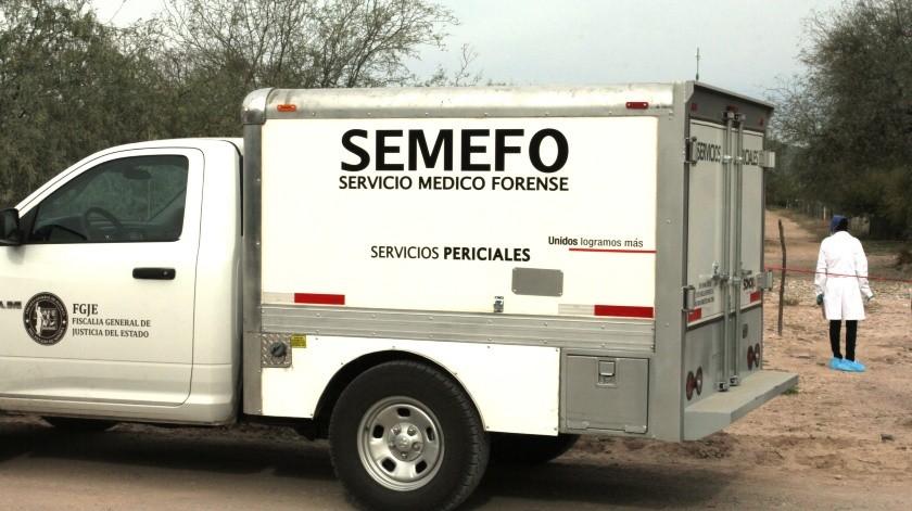 El cuerpo de un hombre sin vida fue localizado en unos terrenos campestres, en San Pedro, El Saucito.