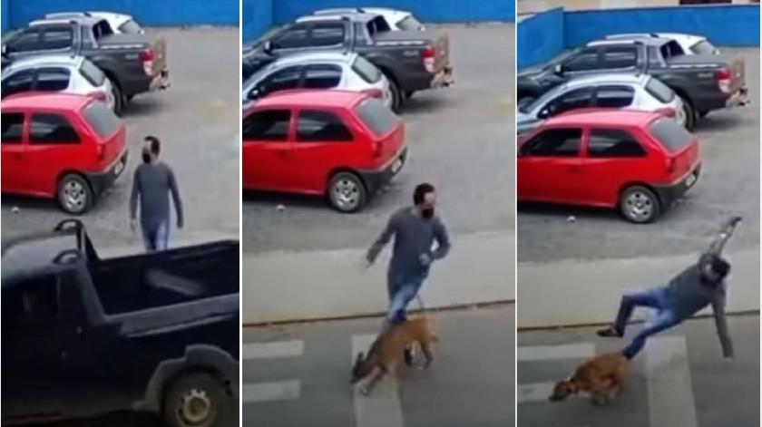 """El perro corría persiguiendo a la camioneta de su dueño; en su camino """"atropelló"""" a una persona.(Captura de pantalla)"""